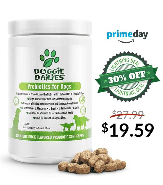 Amazon Prime Day Deals! 30% Off Our Probiotics + Prebiotics Soft Chews for Dogs