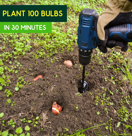The drill&plant mini is the ultimate bulb planting tool