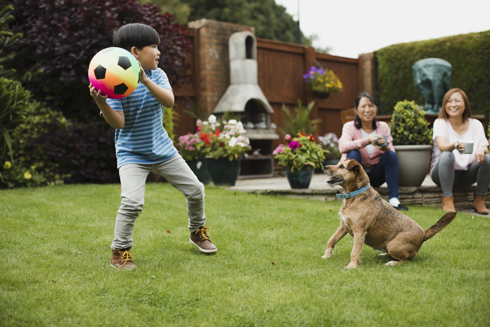 How Your Dog Can Get Exercise Without Leaving the House