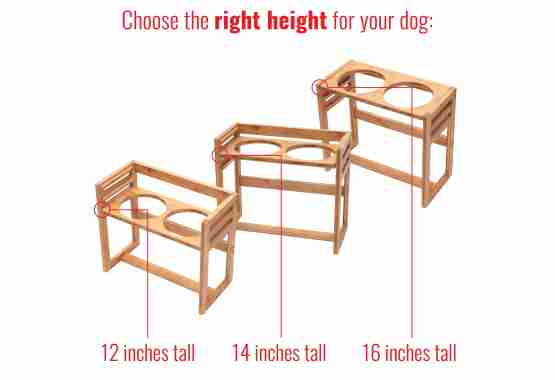 elevated pet feeder is the perfect height for large dogs