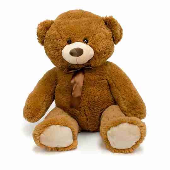 A big brown bear with beige feet.