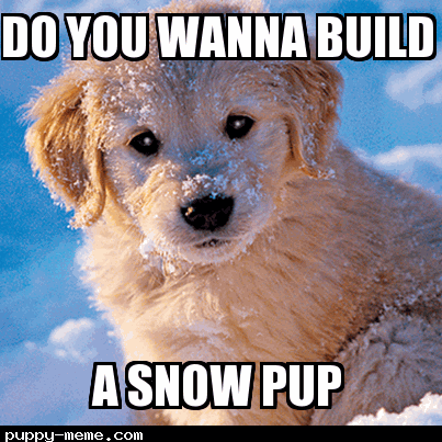 Can snow hurt a dogs paws
