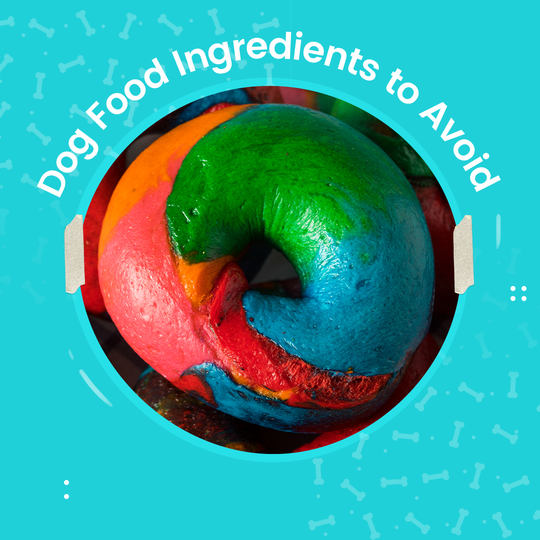 dough made with different artificial colorings