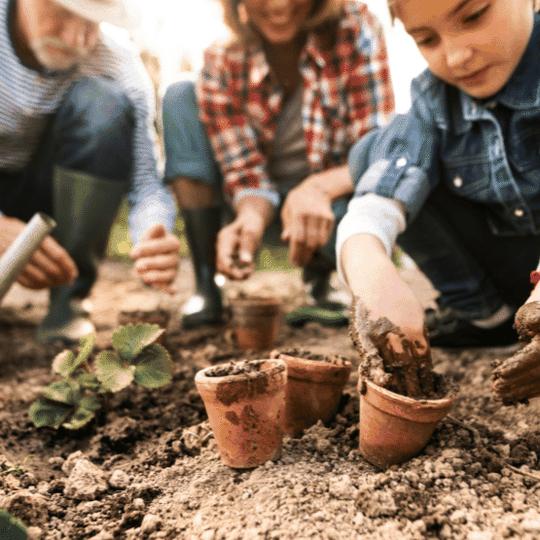 organic gardening teraganix EM-1 terakashi