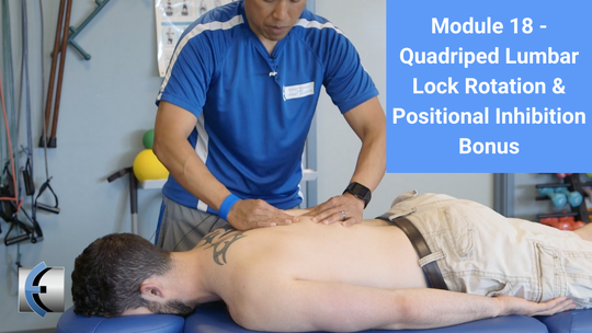 Module 18 - Quadruped Lumbar Lock Rotation & Positional Inhibition Bonus