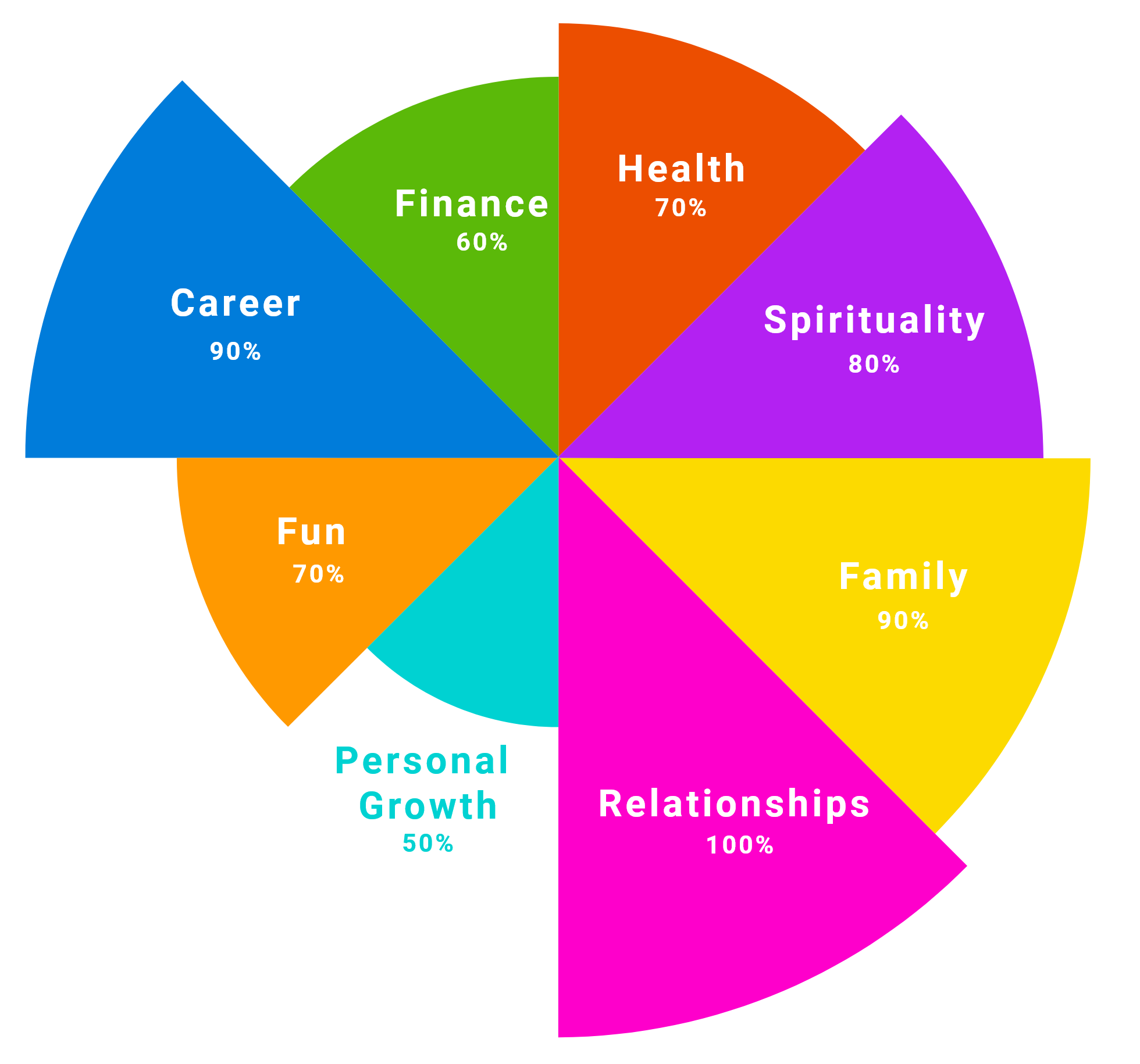 Wheel of Life result example