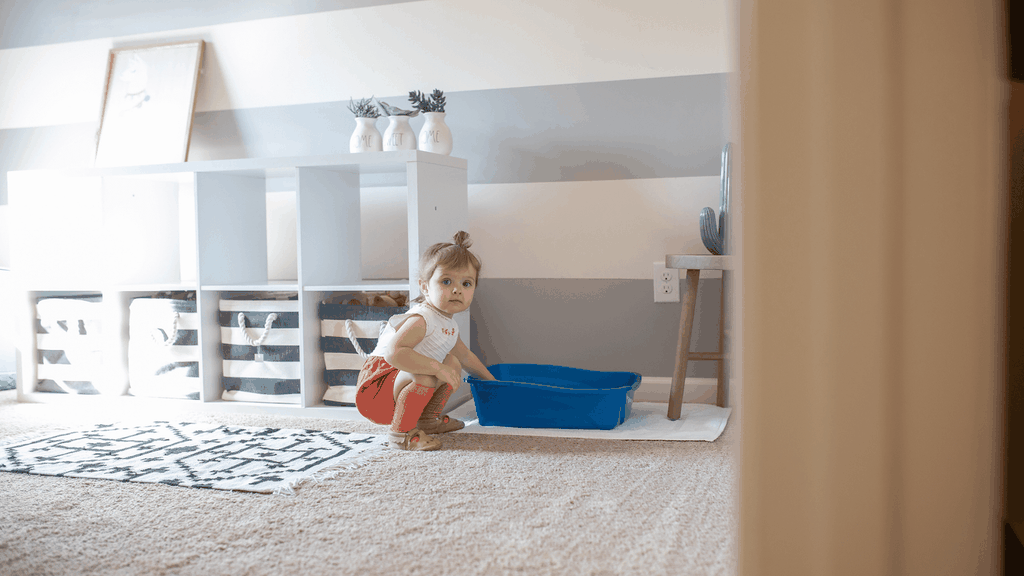 how to keep baby out of litter box - cover image