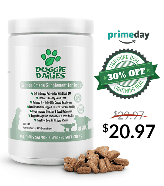 Amazon Prime Day Deals! 30% Off Our Salmon Omega Soft Chews for Dogs