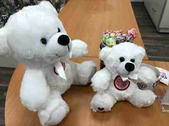 Two Colorama Bears with patches.