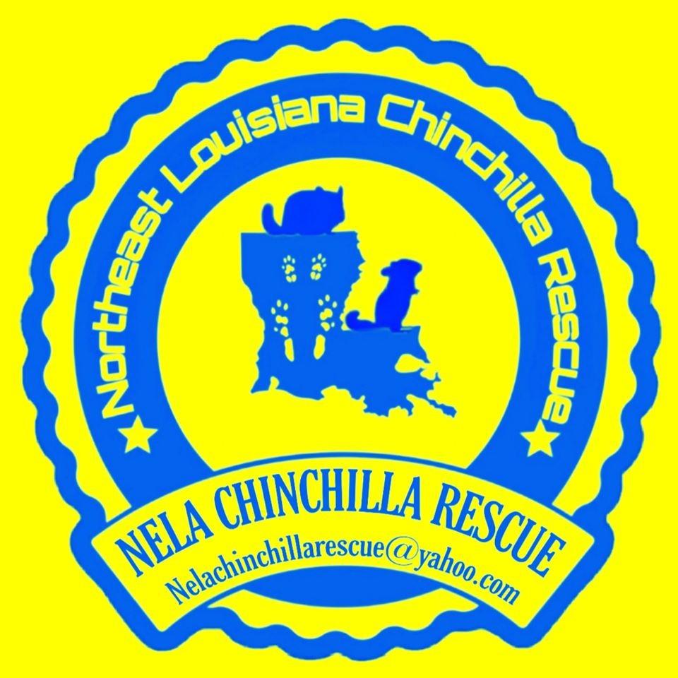 NELA Chinchilla Rescue