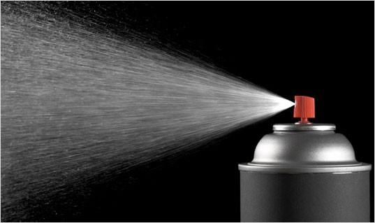 spray punaise de lit