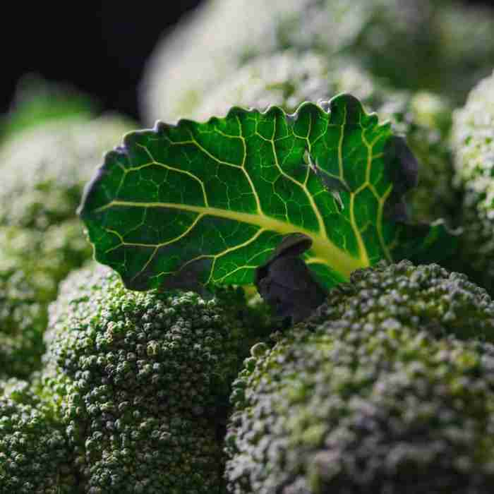 Broccoli is a source of vitamin c