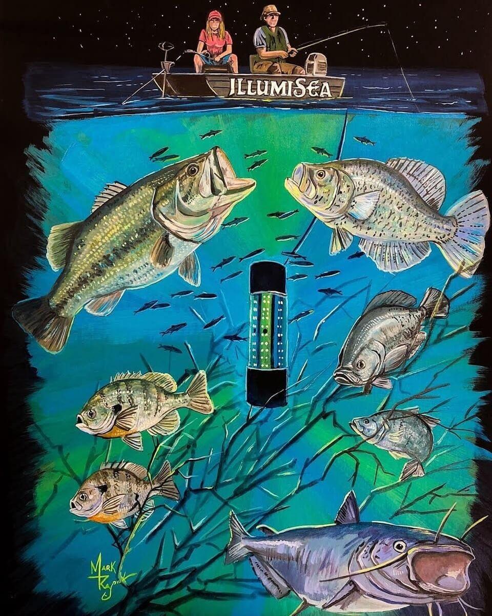underwater fishing light blue green crappie artwork
