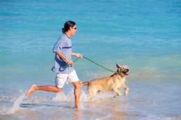 DOG AND OWNER RUNNING ON BEACH