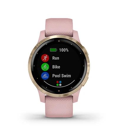 Garmin V4 GPS Smartwatch
