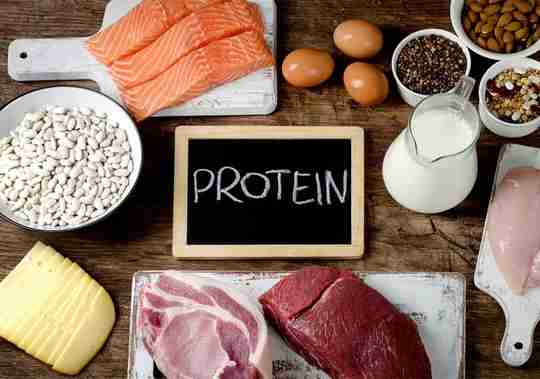 Top Protein Food Sources