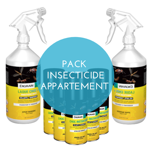Insecticide punaise traitement appartement Pack Safelit