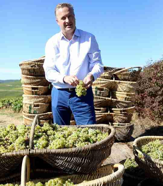 Big Hammer Wine Louis Latour