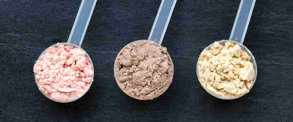 The different types of whey protein concentrate isolate and hydrolyzed.