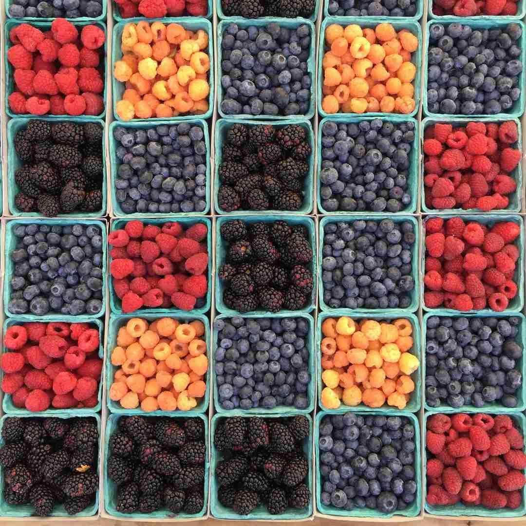 Bunch of berries