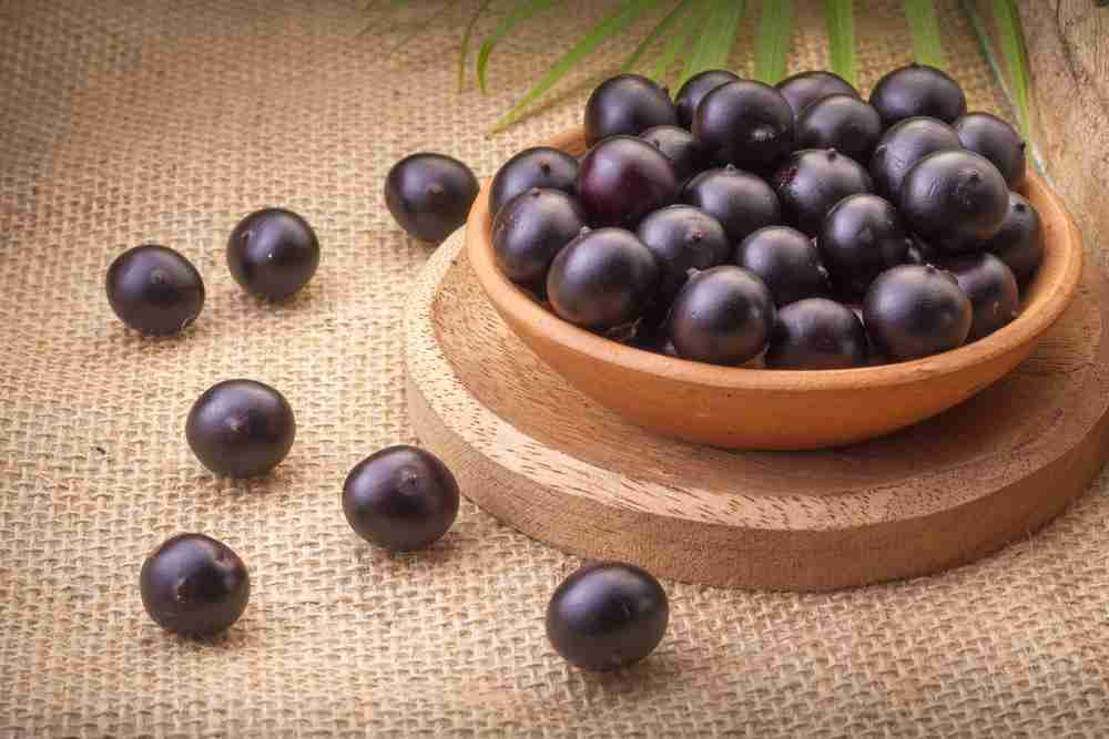 Acai Berries Boost your immune system