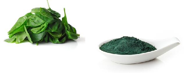 spinach and spirulina ingredients