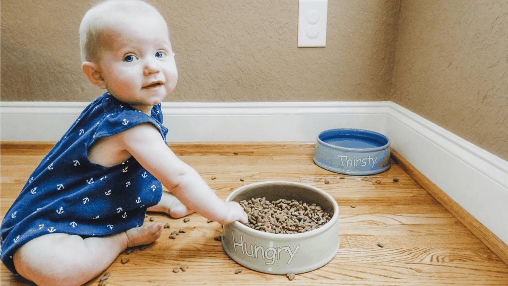The Door Buddy Baby Proofing - Blog image