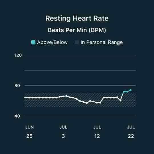 Fitbit Resting Heart Rate