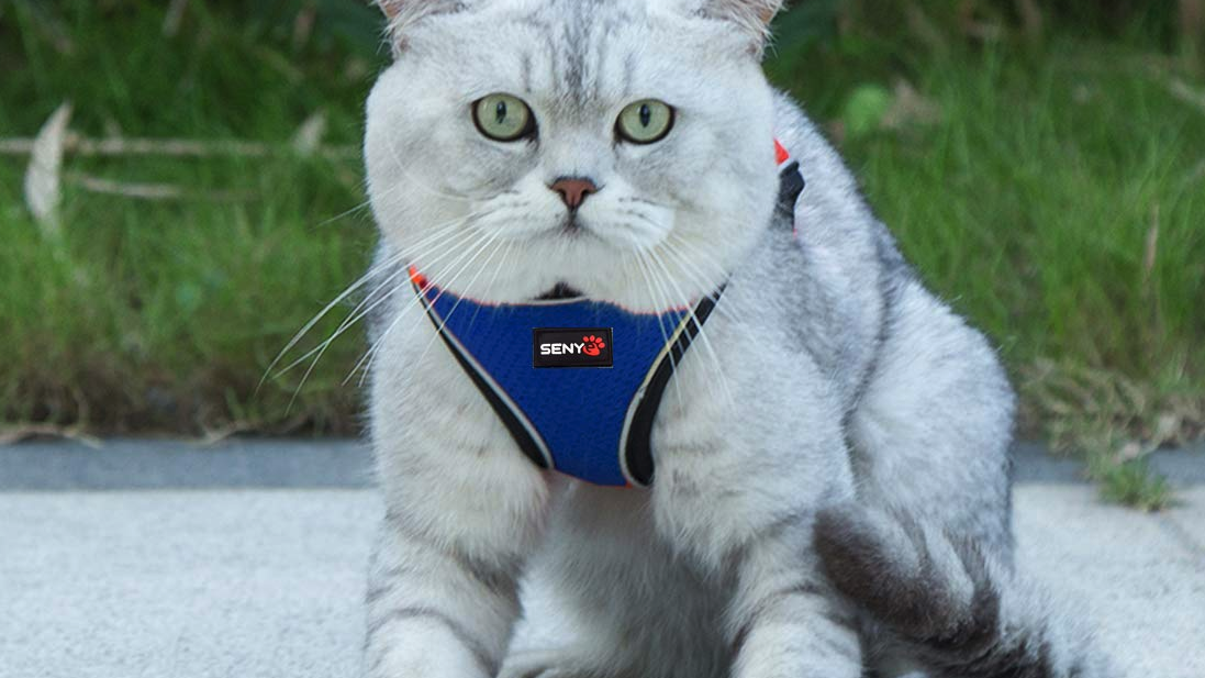 Senye Pet Escape Proof Cat Harness