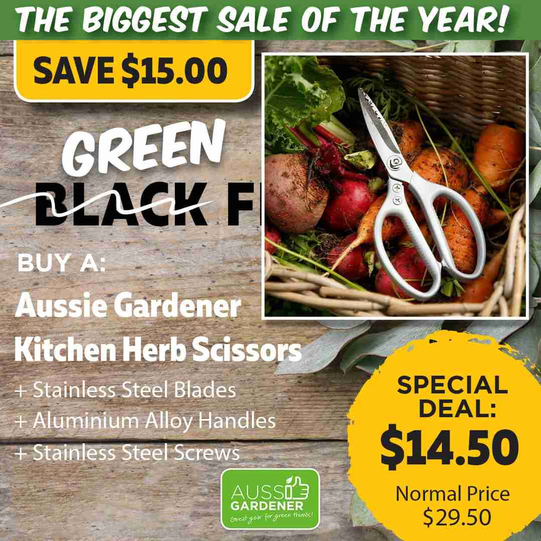 Green Friday Super Deal $29.50 value for just $14.50 - The biggest sale of the year.
