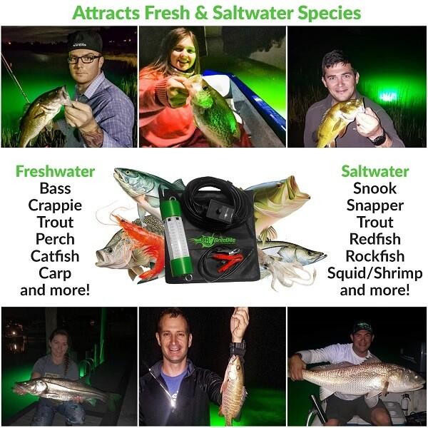 fish attracting night fishing lights