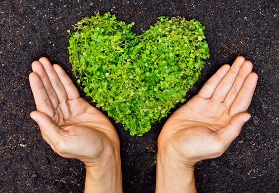 Environmental Awareness and Gratitude