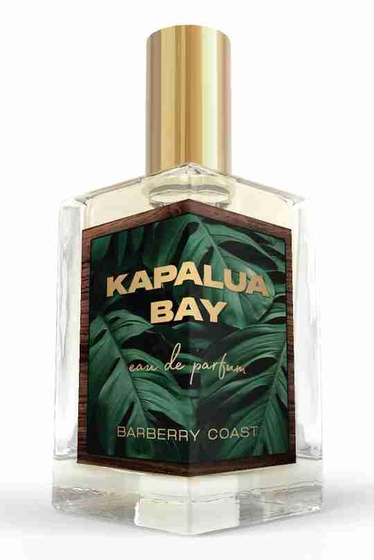 Signature Bold Extrait de Parfum Fragrance
