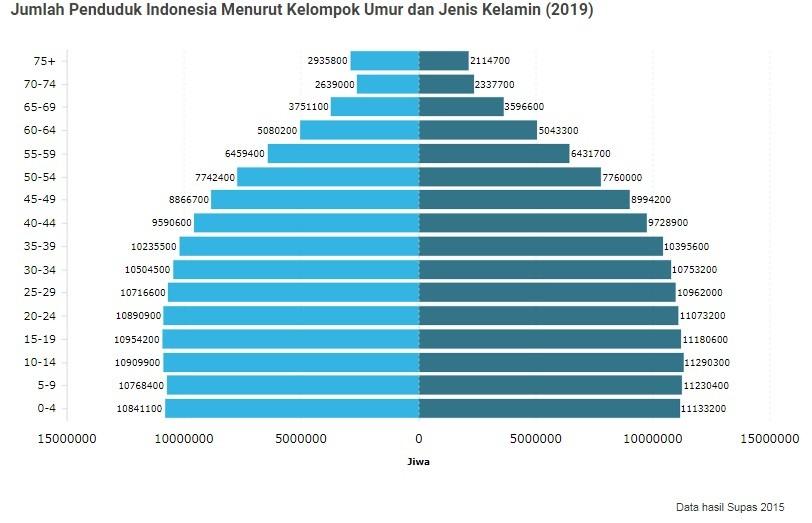 jumlah penduduk indonesia 2019