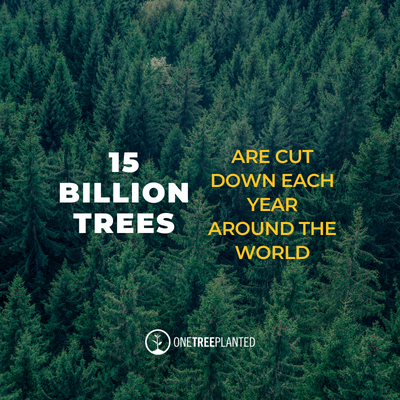 15 billion trees are cut down each year written over an image of a forest