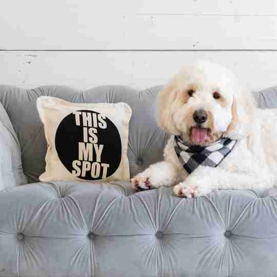 Throw Pillows | from Twisted Wares