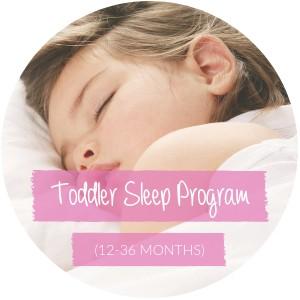 Toddler Sleep Program