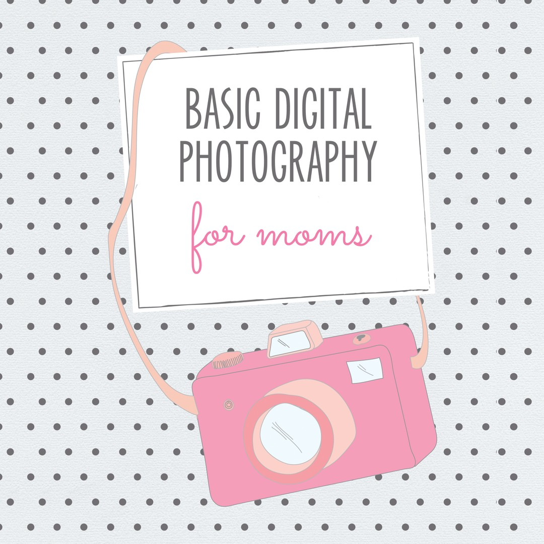 Teach Photography Workshops to moms