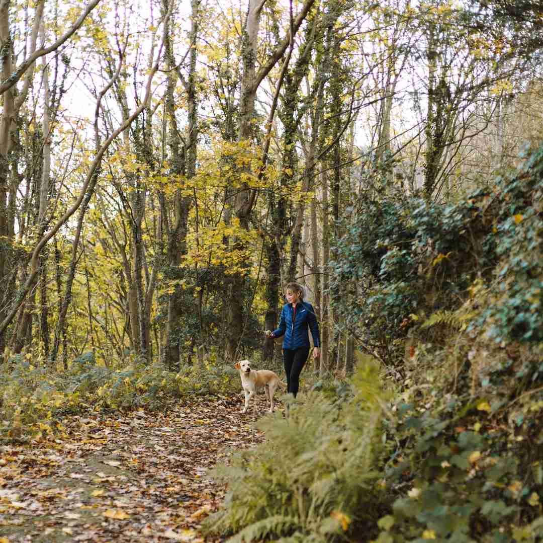 5 ways to stay healthy in Winter outdoor walk 2