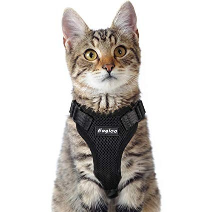 Eagloo Cat Harness