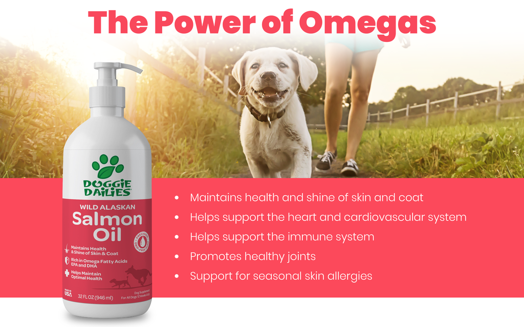 Wild Alaskan Salmon Oil for Dogs
