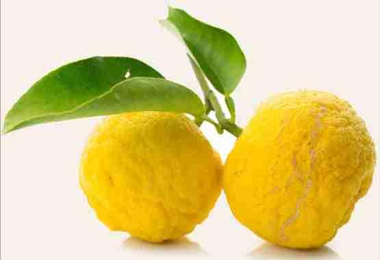 Beautiful and bright wild lemons - key ingredient of Manjish Glow Elixir