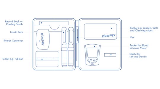 diabetes travel case organiser