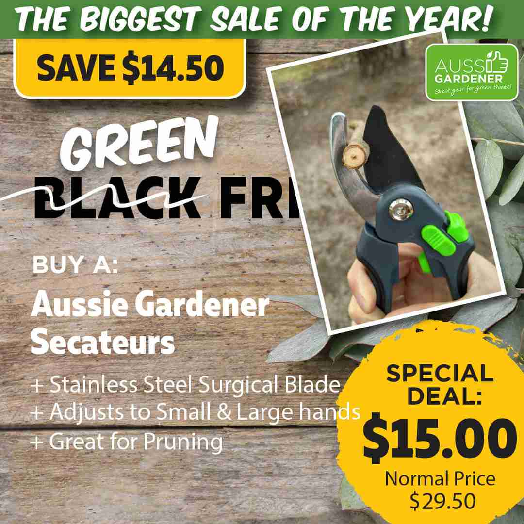 Green Friday Super Deal $29.50 value for just $15 - The biggest sale of the year.