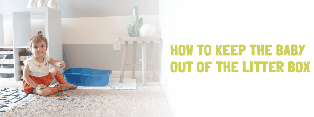 How to Keep the Baby Out of the Litter Box - Banner