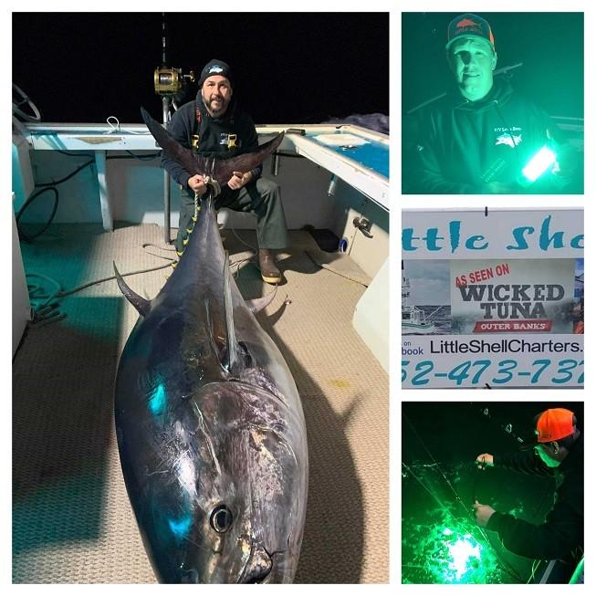 night fishing tuna lights