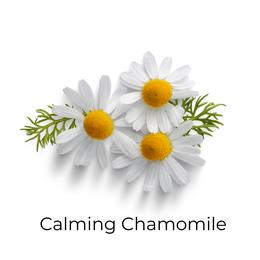 Calming Chamonile