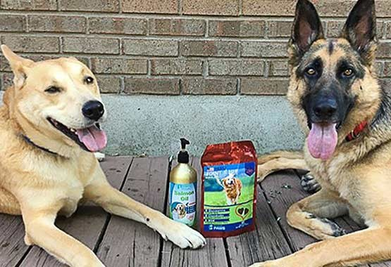 Zeus and Bones - Salmon Oil & Joint and Hip Treats