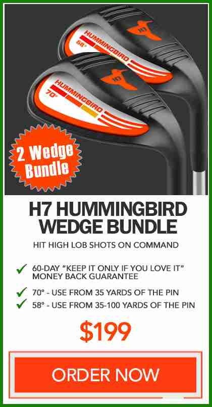add_to_cart_hummingbird_bundle