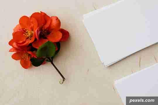 perbedaan art paper dan aer carton, kertas art paper, jenis kertas art paper